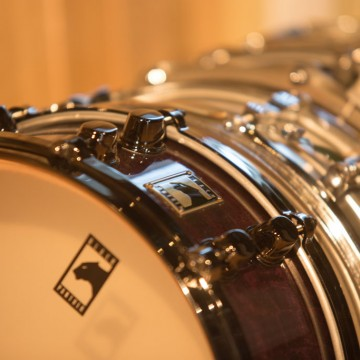 Snare close up